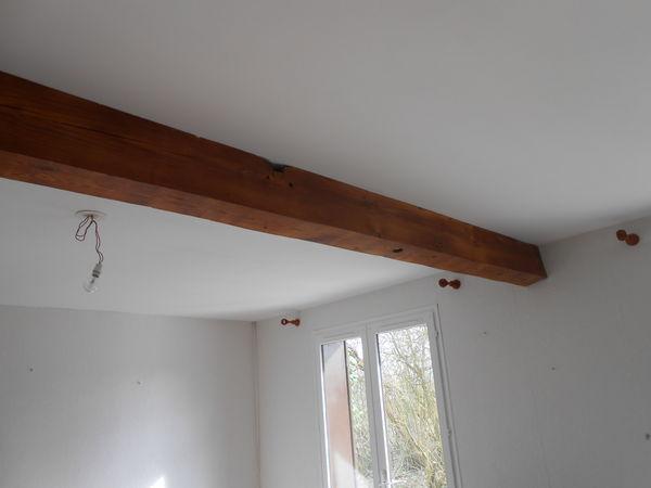 achetez poutre plafond occasion annonce vente genech