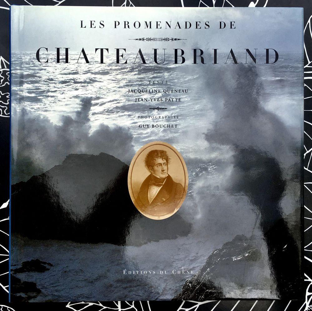 Les Promenades de Chateaubriand par J.Queneau, Livre neuf  14 L'Isle-Jourdain (32)