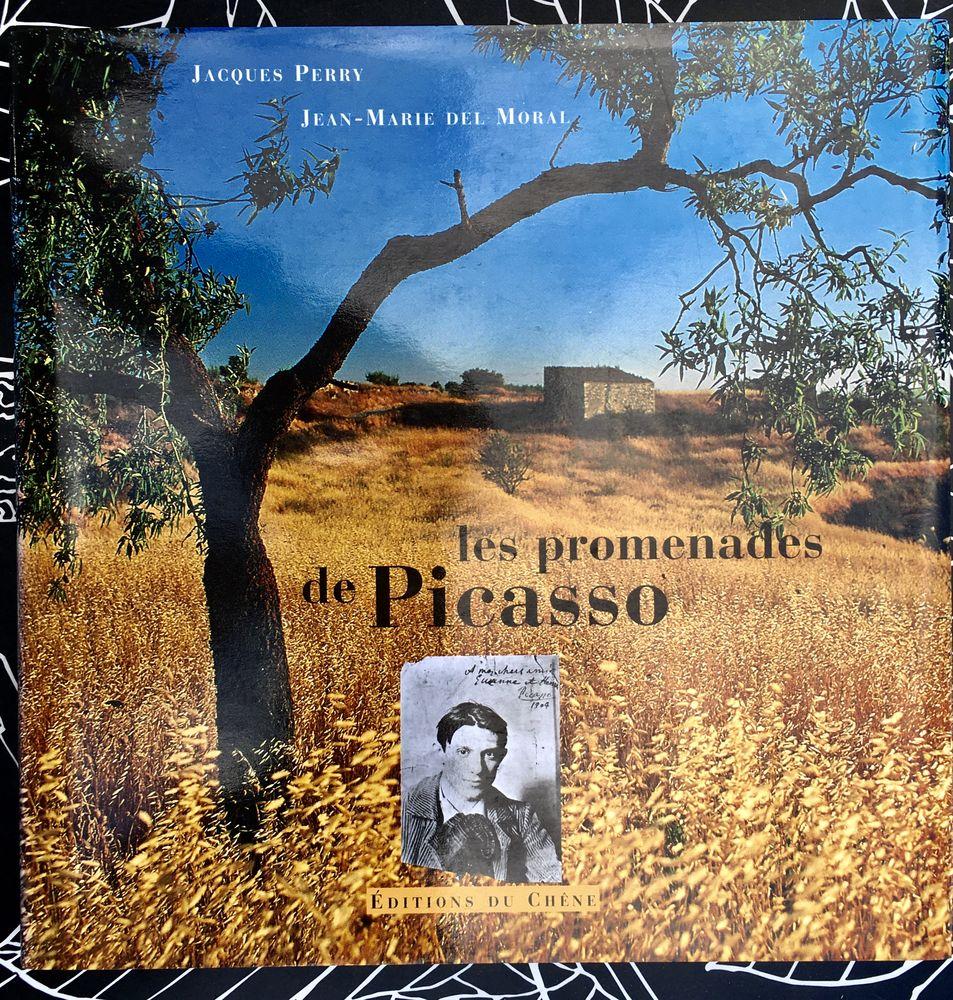 Les Promenades de Picasso par Jacques Perry;Beau livre d'art 14 L'Isle-Jourdain (32)
