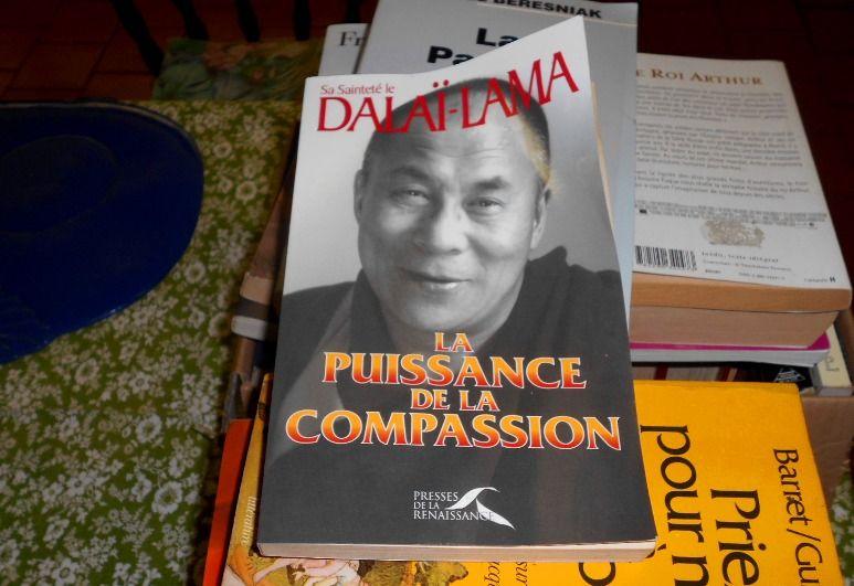 La puissance de la compassion sa sainteté le Dalaî-Lama 10 Monflanquin (47)