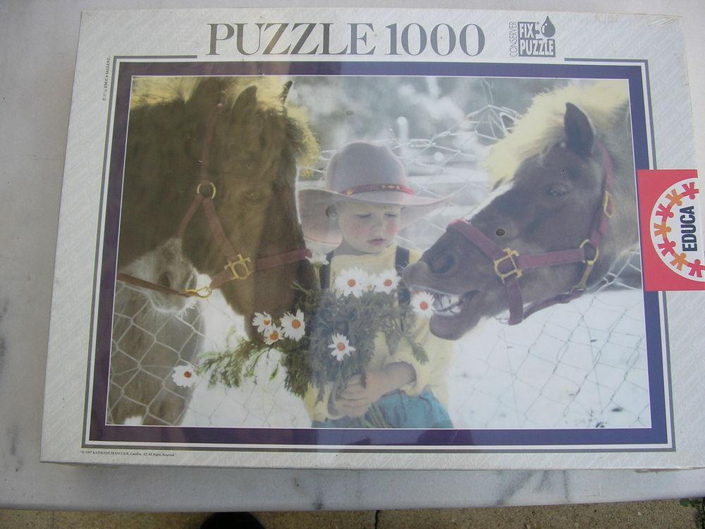 Puzzle 1000 pièces 8 Nîmes (30)