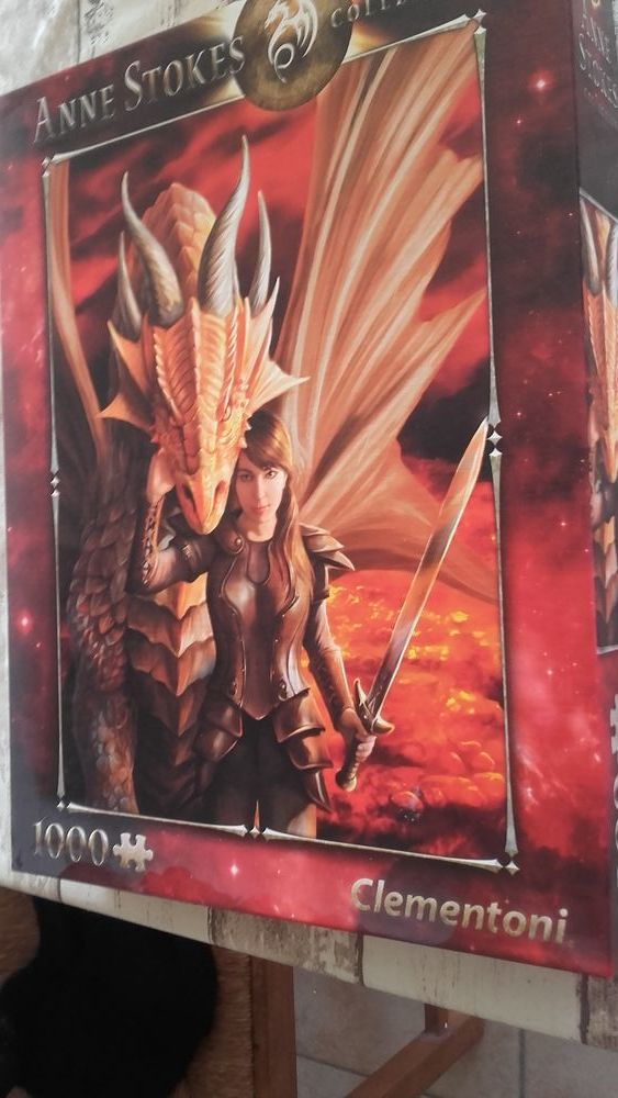 Puzzle anna  stokes  La force intérieur 1000 pièces 10 Montfort (04)