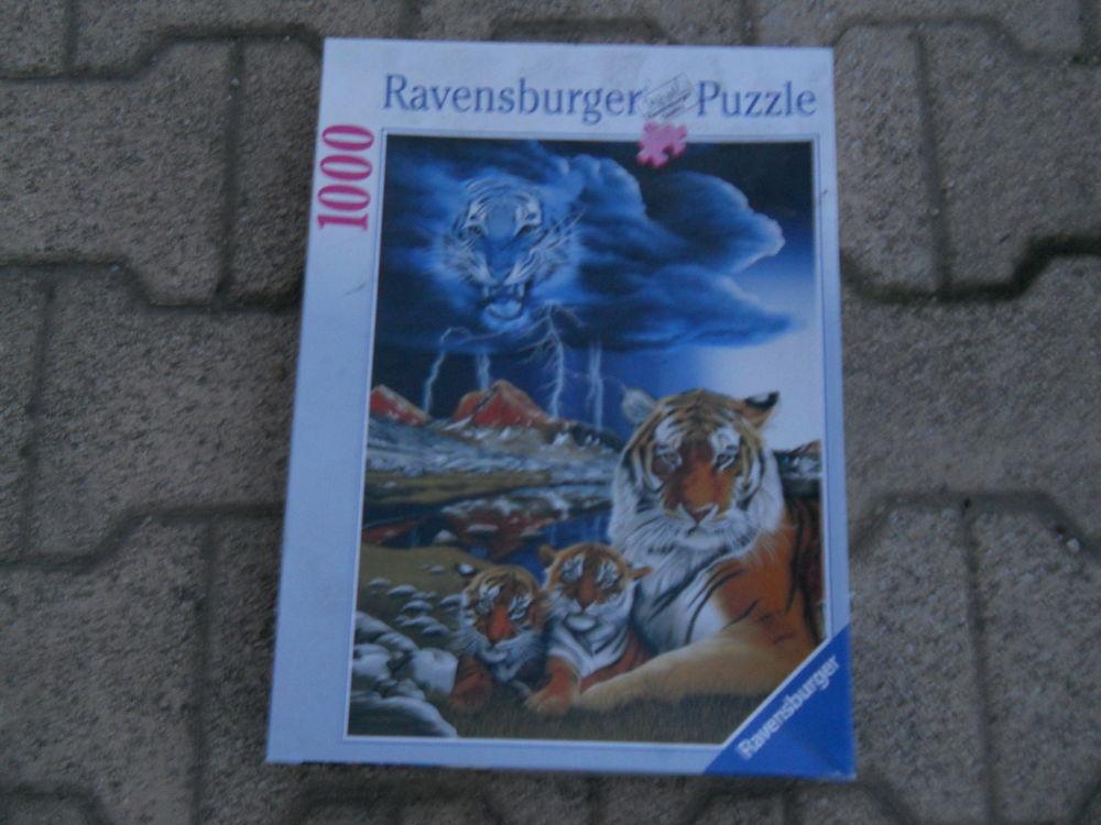 puzzle en boite  2 Meynes (30)