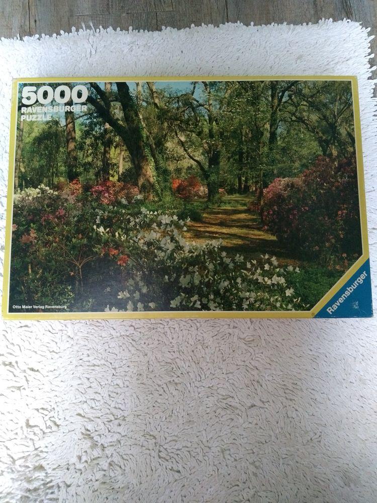 Puzzle RAVENSBURGER 5000 pièces 25 Mellecey (71)