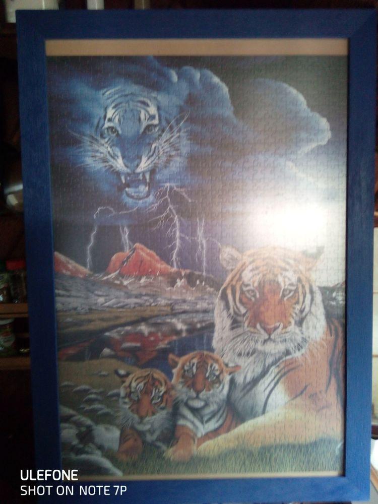 Puzzle tigre  15 Quistinic (56)