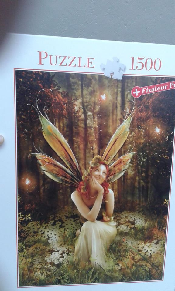 Puzzle 15 Mantes-la-Ville (78)