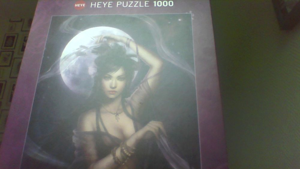 puzzle 20 Aubergenville (78)