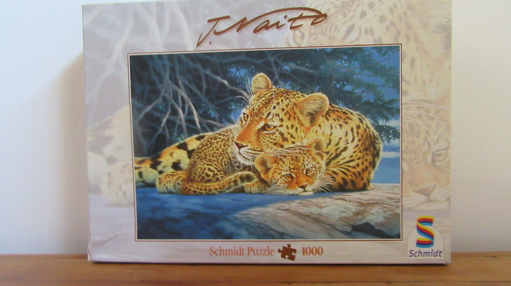 Puzzles 6 Anglet (64)