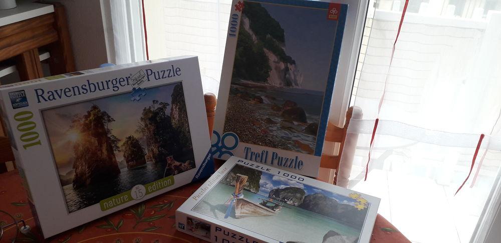 Puzzles  4 St Brevin L Ocean (44)