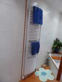 3 Radiateurs en fonte et un sèche-serviette 220 Annecy-le-Vieux (74)