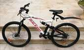 Vtt 21  raleigh (cycleurope en14766) 100 Albi (81)