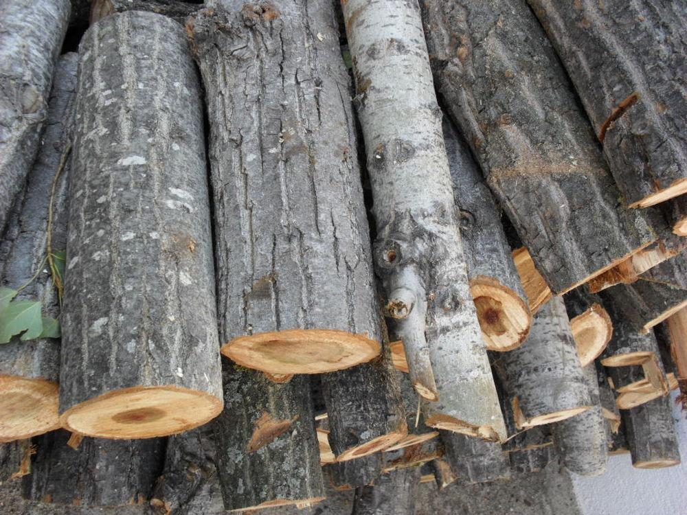 Récupère bois vert livré, vert ou sec à fendre 0 Montpellier (34)