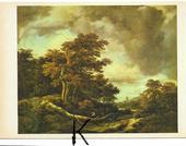 C P M ,Reproduction , Van Ruysdael Jacob , la Forêt 3 Tours (37)