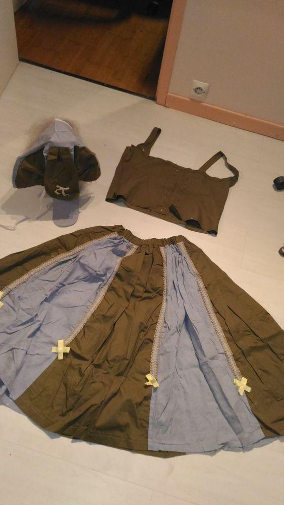 robe champêtre (déguisement) femme 20 Épinay-sur-Orge (91)