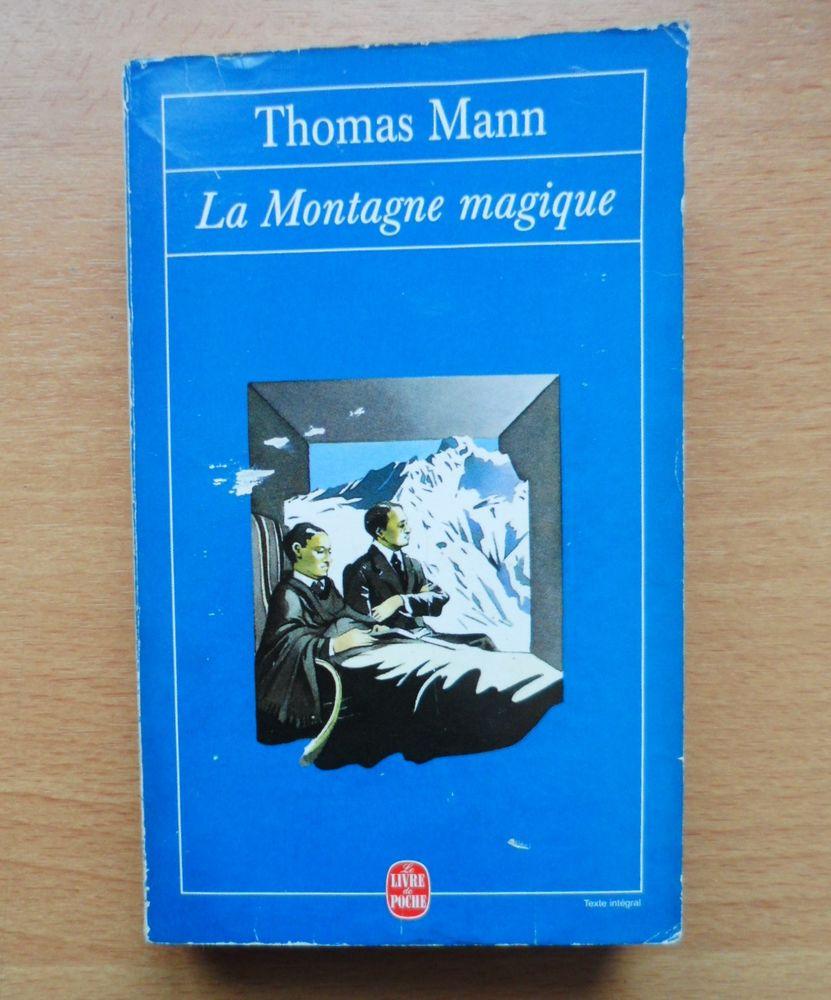 Roman La montagne magique 3 Lille (59)