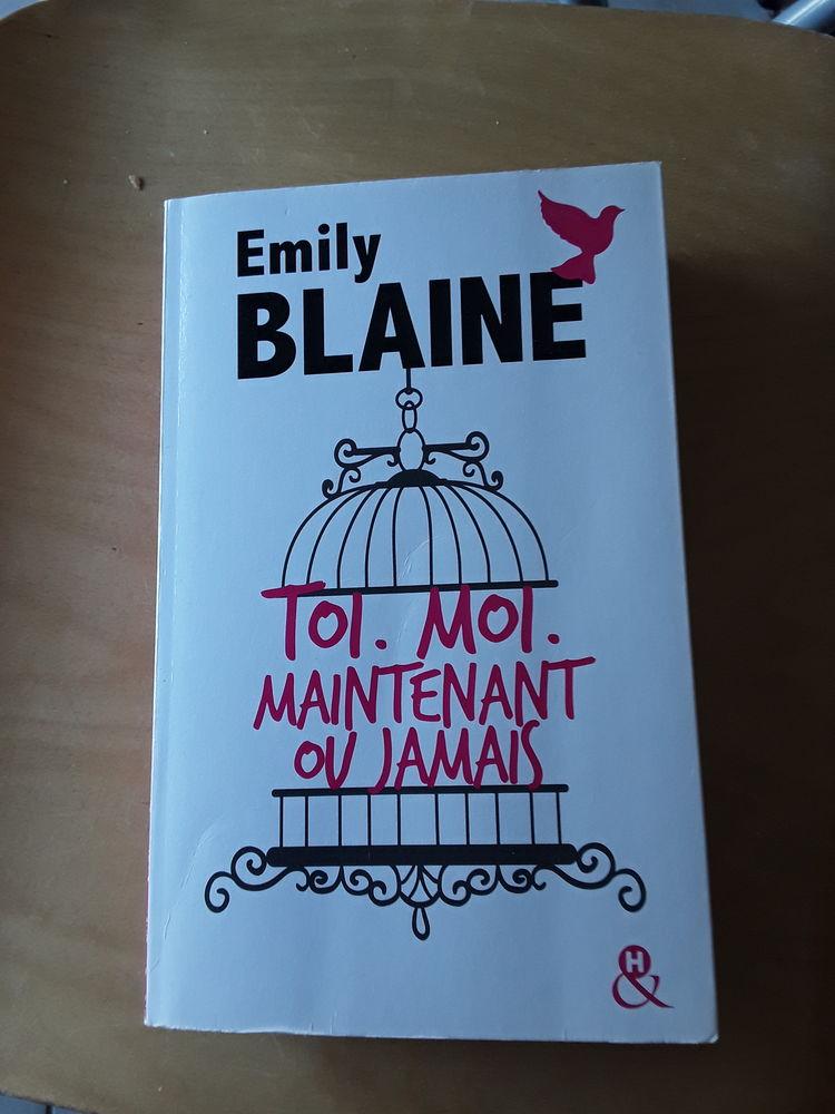 New romance  8 Paray-le-Monial (71)