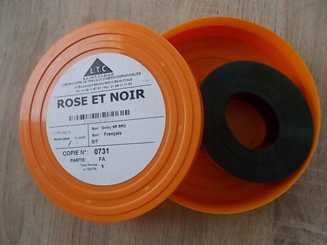 FA 35 mm : ROSE ET NOIR - 731 5 Salignac (33)