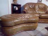 salon cuir et bois 170 Campistrous (65)