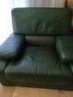 salon cuir vert 380 Aniane (34)