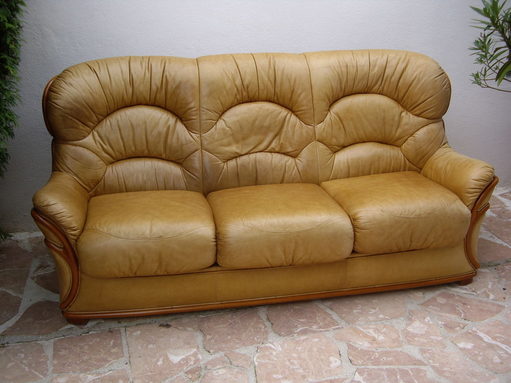 salon cuir  200 Linas (91)