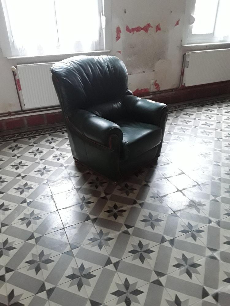 salon vert cuire 200 Anneux (59)