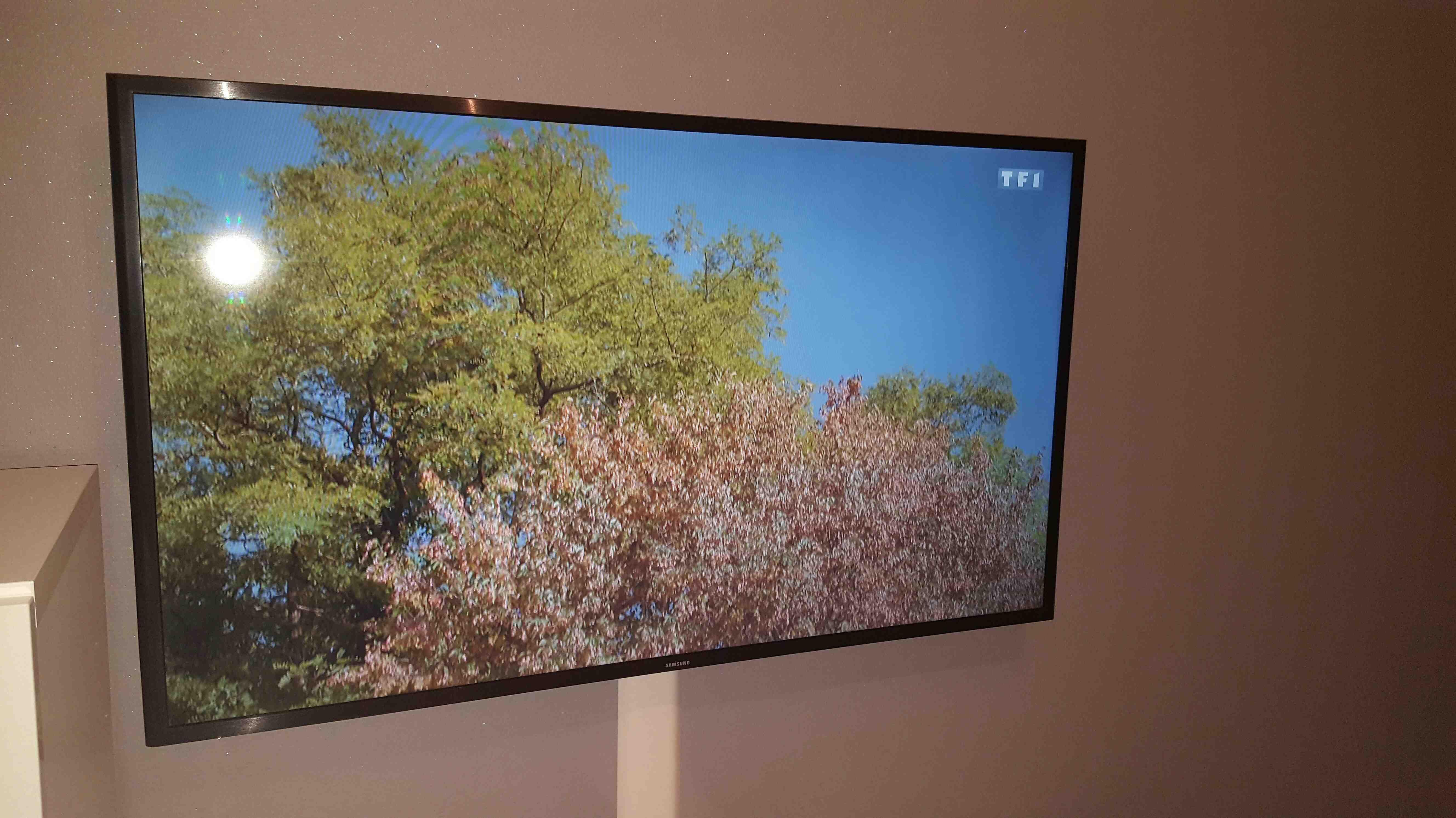 TV SAMSUNG 500 Ostwald (67)