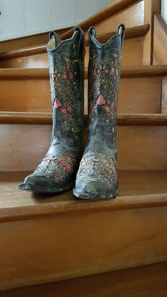 SANTIAG de marque Arizona Boots 150 La Roche-sur-Yon (85)