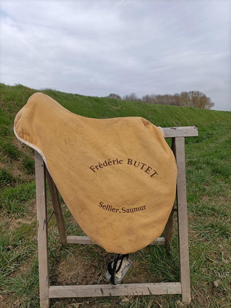 Selle de cheval butet 0 Muret (31)