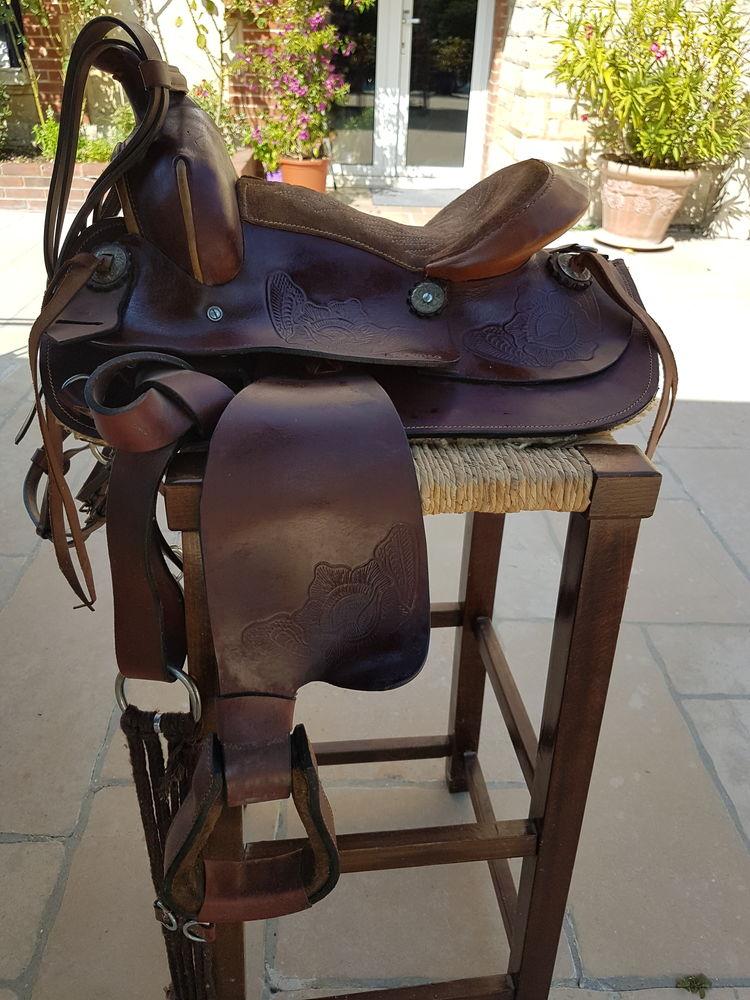sellerie chevaux  200 Flogny-la-Chapelle (89)