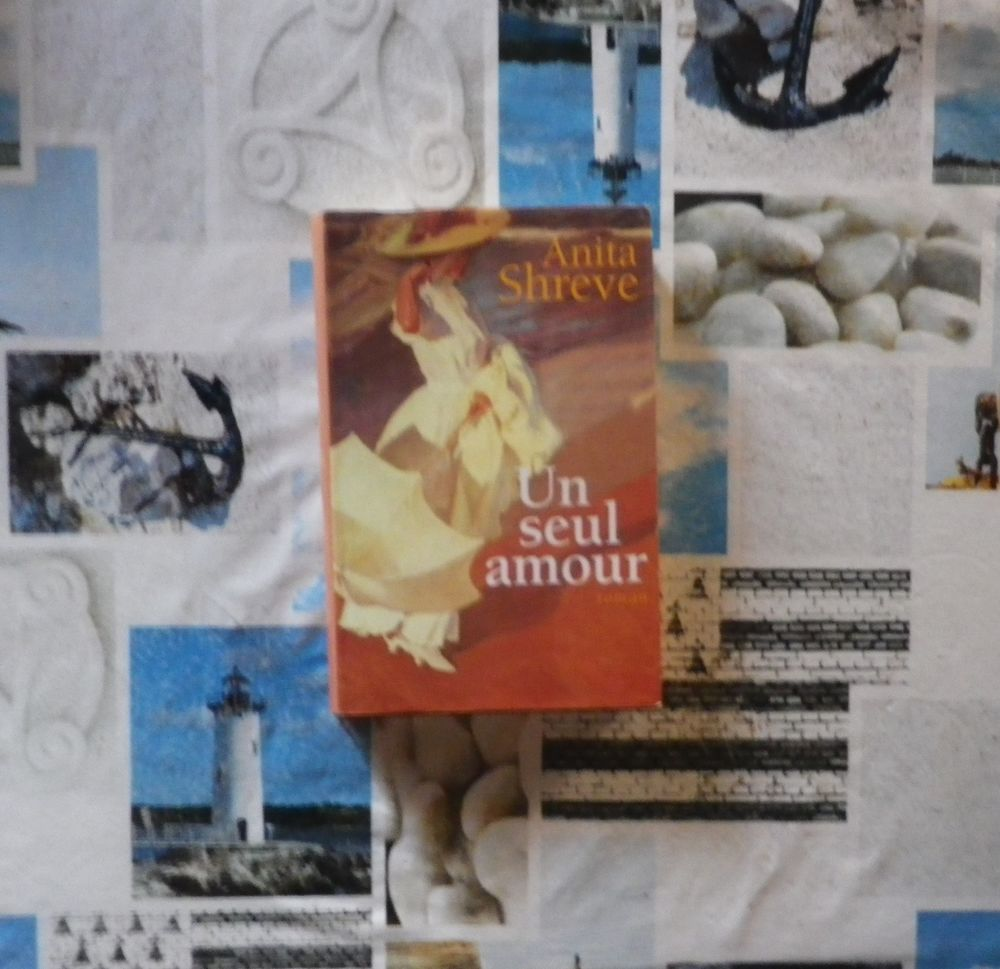 UN SEUL AMOUR de Anita SHREVE Ed. France Loisirs 4 Bubry (56)
