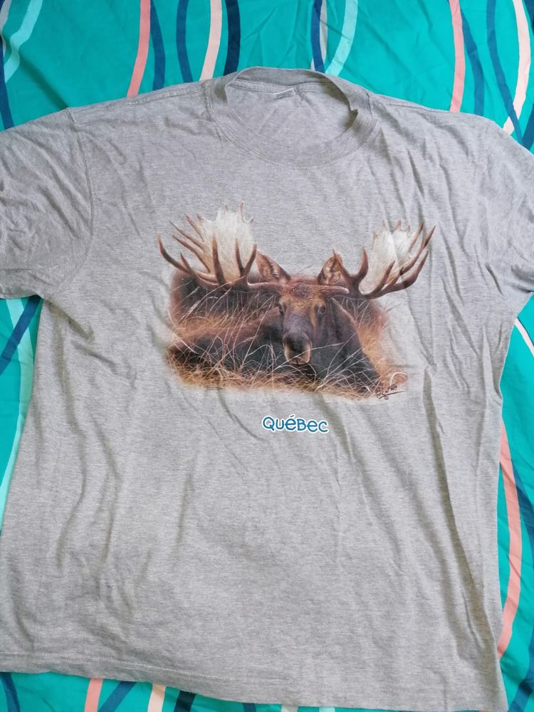 Tee-shirt Homme Québec 10 Narbonne (11)