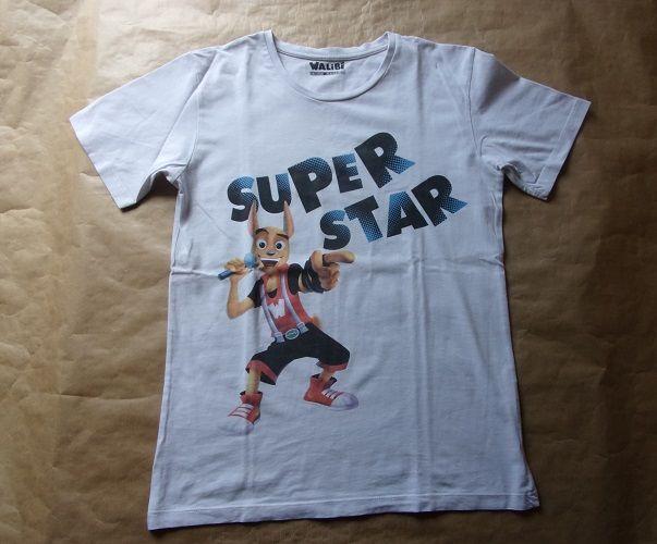 Tee shirt en taille 12-14 ans 1 Montaigu-la-Brisette (50)