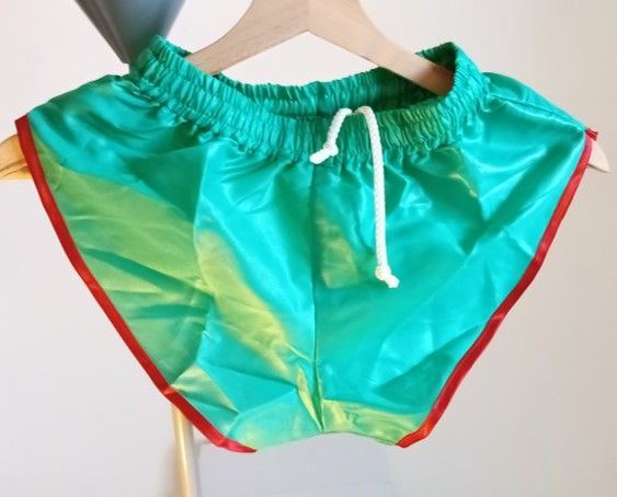 Short neuf nylon polyamide Vintage Vert/Rouge S/L 40 23 Lyon 3 (69)