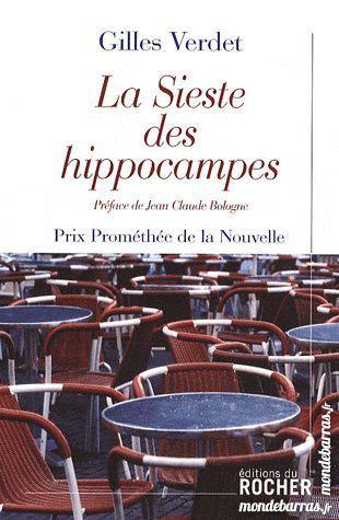 La Sieste Des Hippocampes Gilles Verdet 5 Gujan-Mestras (33)