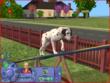 Les Sims 3 Histoires d'Animaux Consoles et jeux vidéos