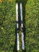 Skis et bâtons  20 Champdor (01)