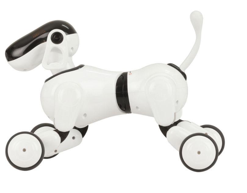 Smart dog PuppyGo  100 Paris 18 (75)