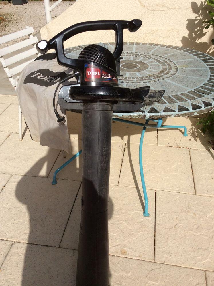 Souffleur aspirateur portable  35 Marseille 9 (13)