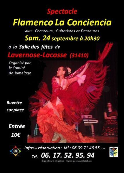 Spectacle de Flamenco La Conciencia 10 Lavernose-Lacasse (31)