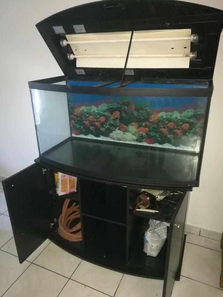 Superbe aquarium 200 litres 0 La Possession (97)