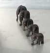 5 superbes éléphanteaux de Côte d'Ivoire Décoration