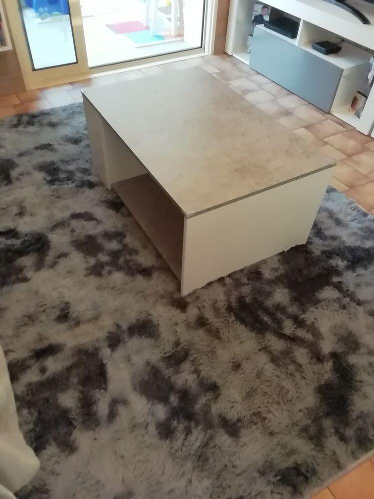 table basse de salon 20 Vendrennes (85)