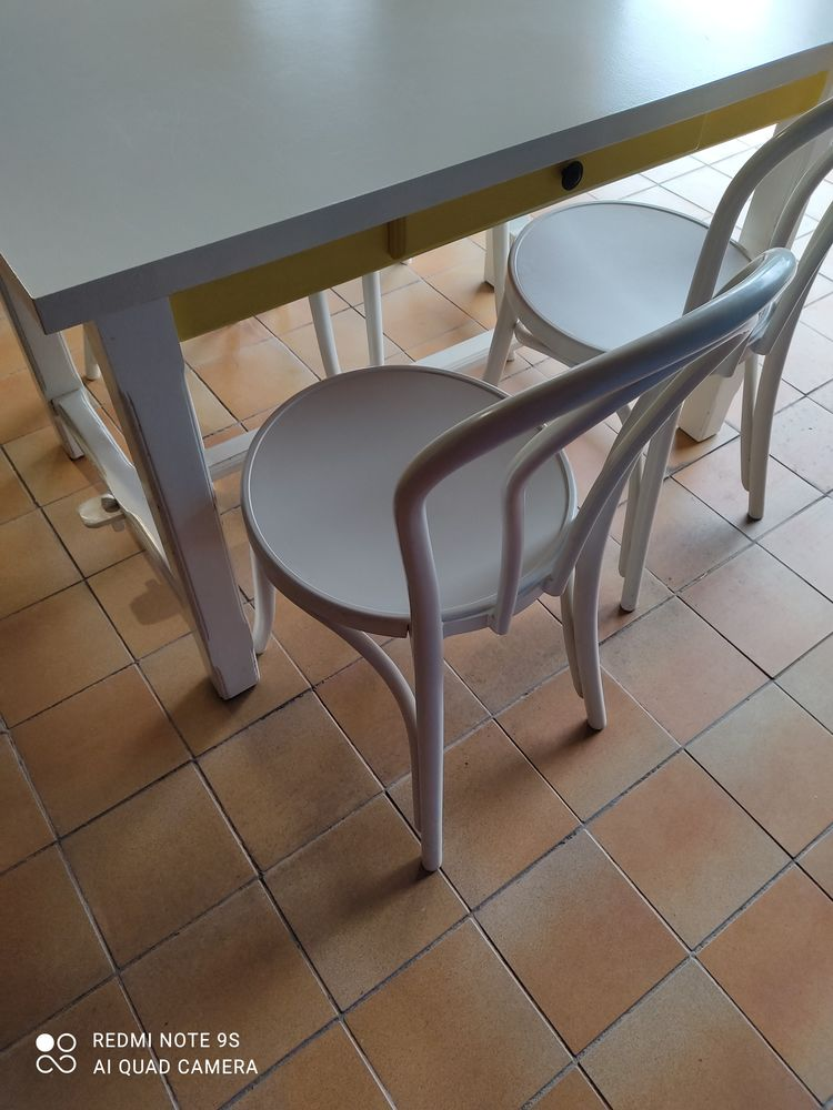 TABLE + 4 CHAISES 40 Genas (69)