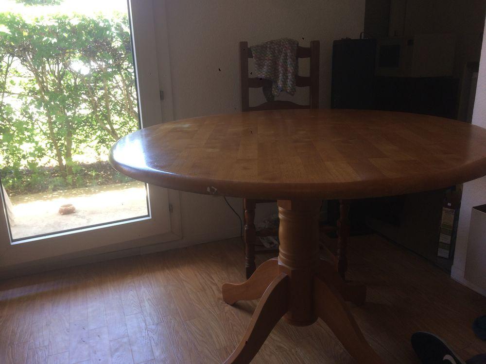table à manger de forme ovale  20 Toulouse (31)