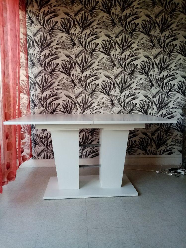 Table de salle à manger avec rallonge pour 10 à 12 personnes 100 Riom (63)