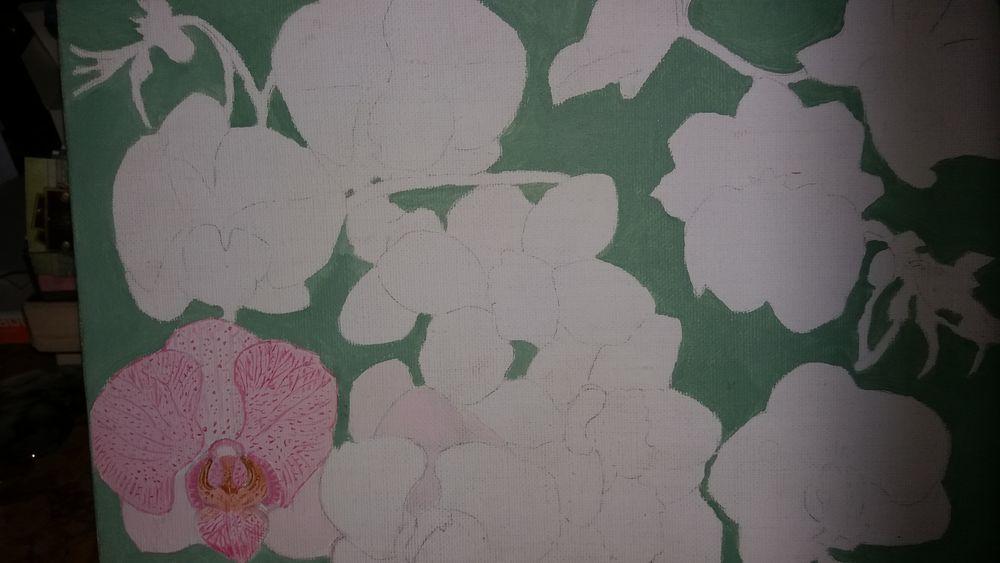 tableaux fleurs 20 Vicdessos (09)