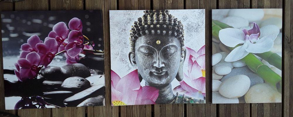 Lot de 3 tableaux ZEN Orchidées et bouddha 35 Draguignan (83)