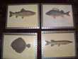 4 tableaux vitrés poissons