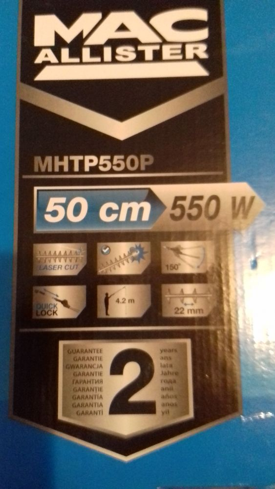 Taille  haie 50 Troyes (10)