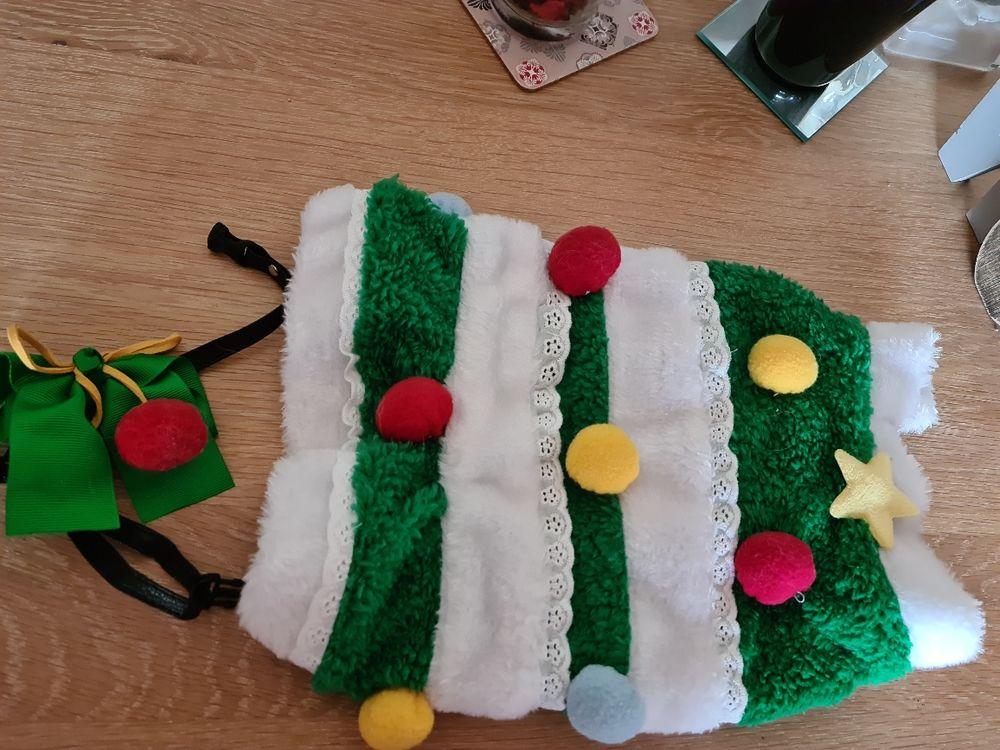 Tenue sapin de Noël pour petit chat ou petit chien 15 Oullins (69)